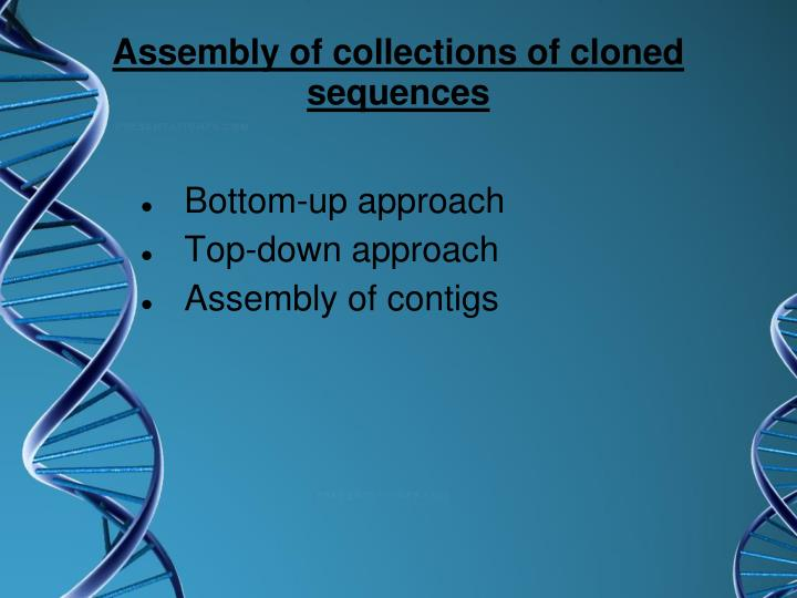 Assembly of collections of cloned sequences