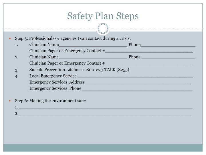 Safety Plan Steps