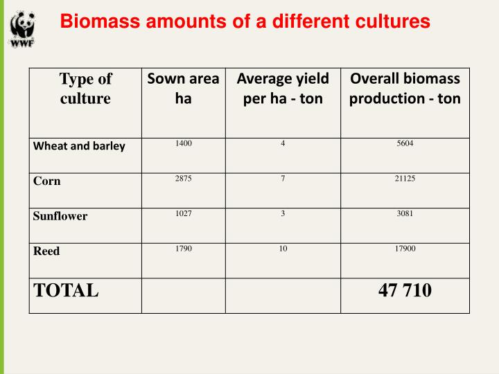 Biomass amounts of a different cultures