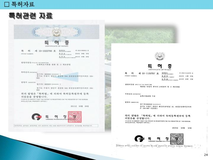 □ 특허자료