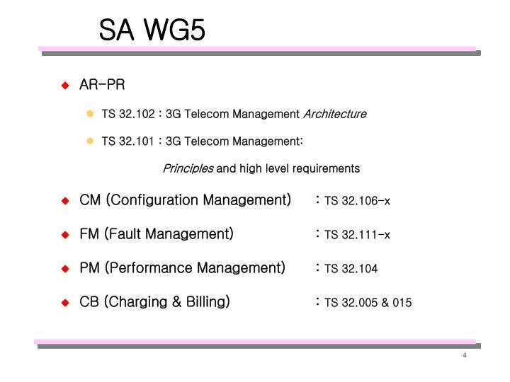 SA WG5