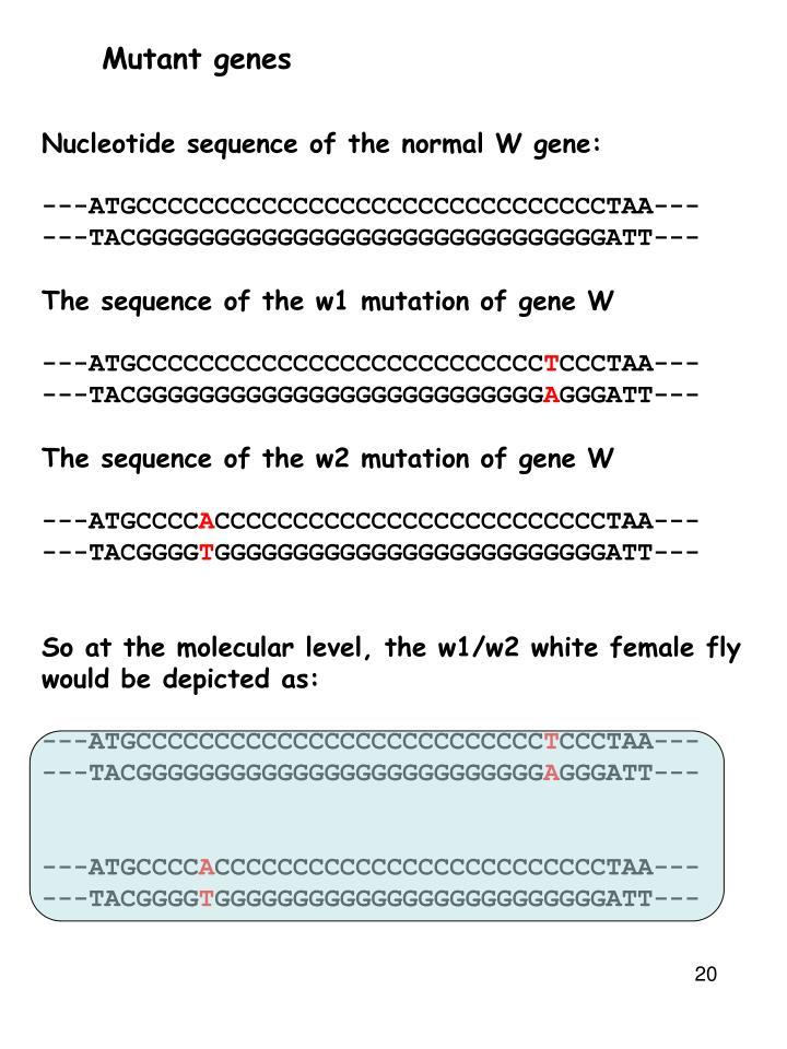 Mutant genes