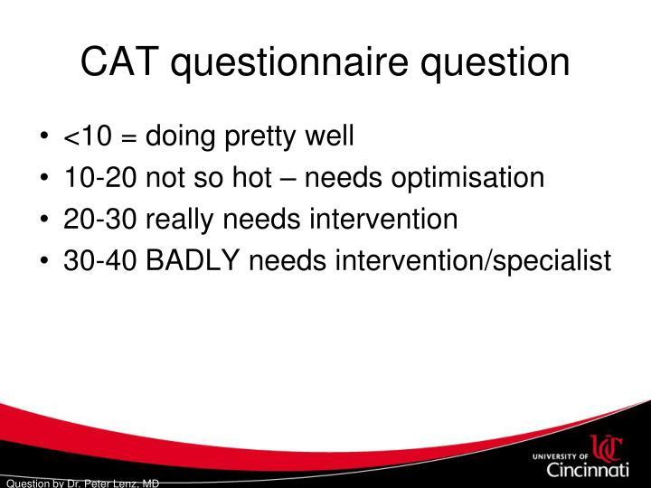 CAT questionnaire question