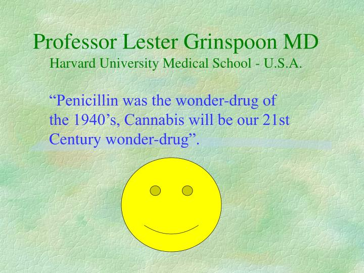 Professor Lester Grinspoon MD