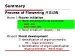 process of flowering1