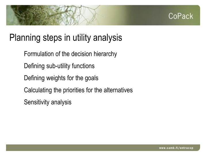 Planning steps in utility analysis