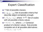 expert classification2