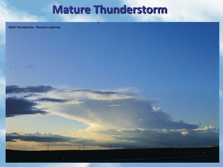 Mature Thunderstorm