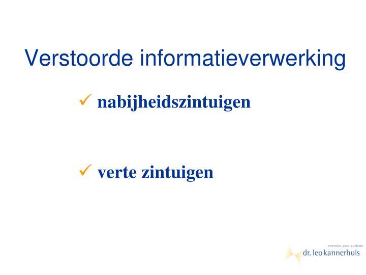 Verstoorde informatieverwerking