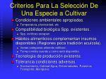 criterios para la selecci n de una especie a cultivar