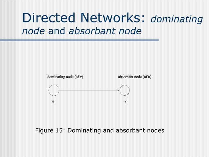 Directed Networks: