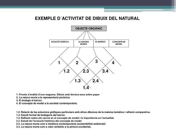 EXEMPLE D´ACTIVITAT DE DIBUIX DEL NATURAL