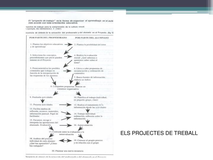 ELS PROJECTES DE TREBALL