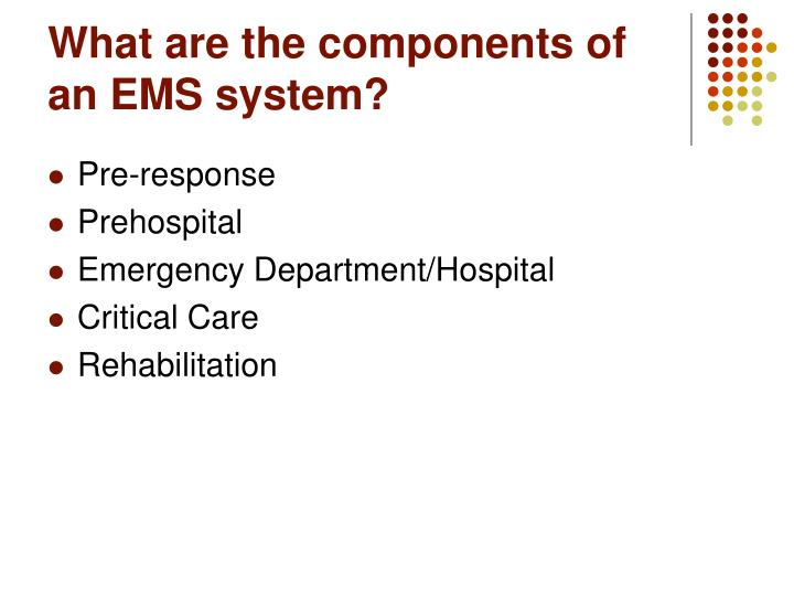 What are the components of an EMS system?