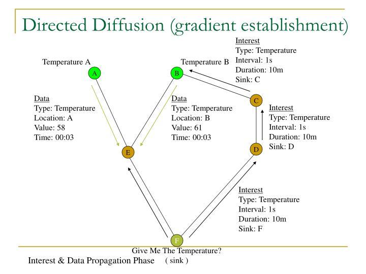 Directed Diffusion (gradient establishment)