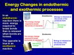 energy changes in endothermic and exothermic processes