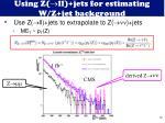 using z ll jets for estimating w z jet background