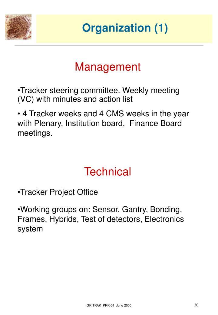 Organization (1)