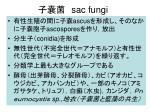 sac fungi