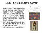 slide29