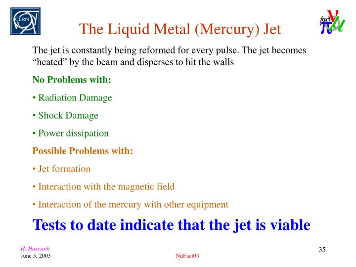 The Liquid Metal (Mercury) Jet