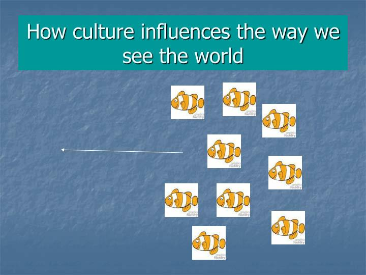 How culture influences the way we see the world