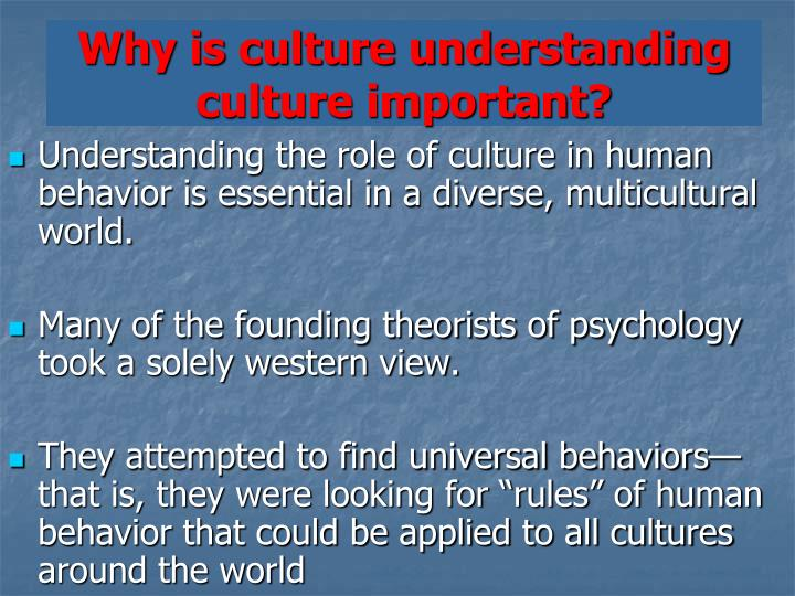 Why is culture understanding culture important?