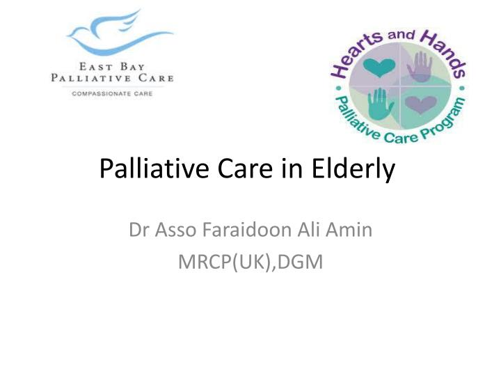 palliative care in elderly n.