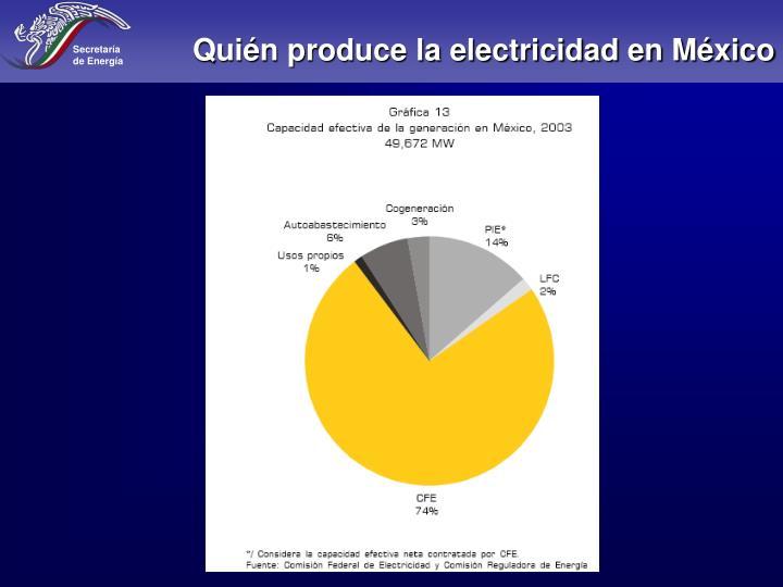 Quién produce la electricidad en México