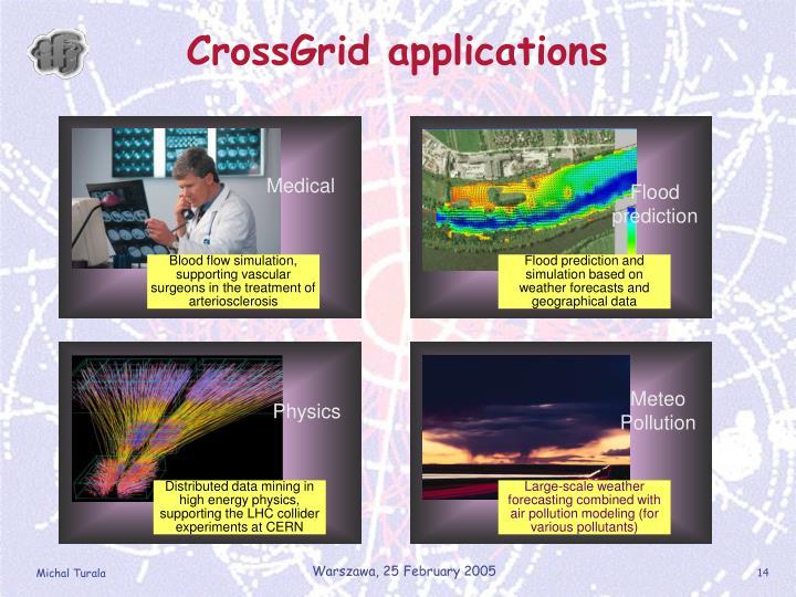 CrossGrid applications