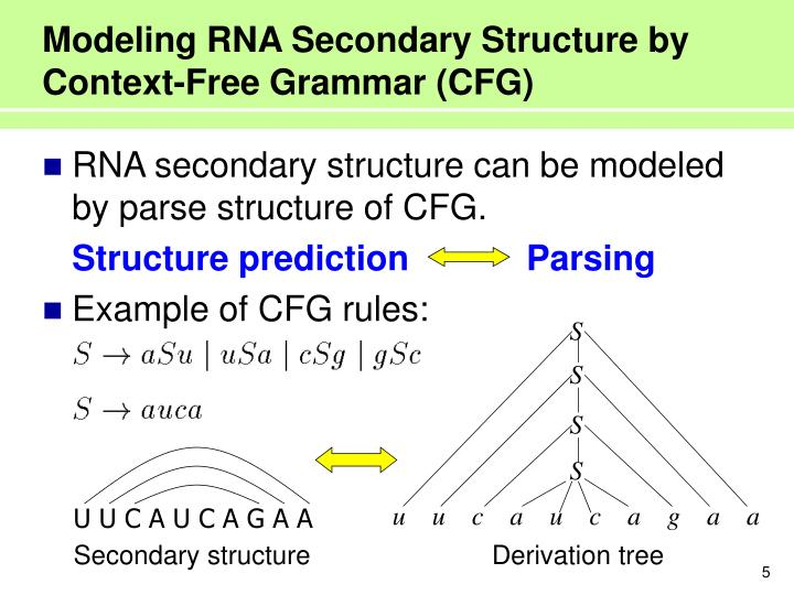 Modeling RNA Secondary Structure by Context-Free Grammar (CFG)