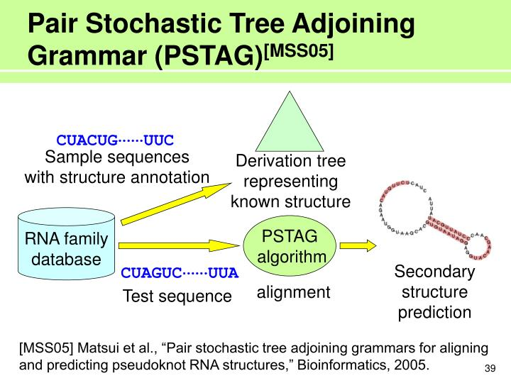 Pair Stochastic Tree Adjoining Grammar (PSTAG)