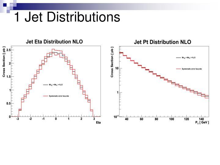 1 Jet Distributions
