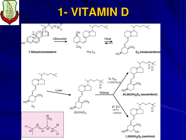 1- VITAMIN D