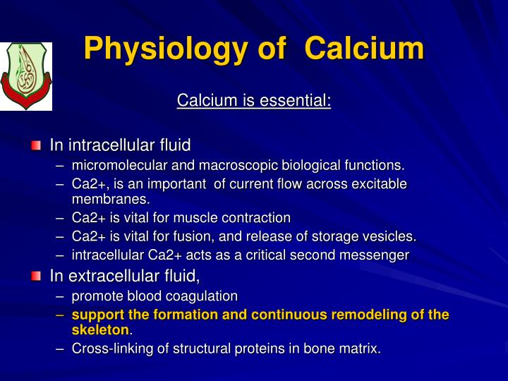 Physiology of calcium