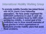 international mobility working group