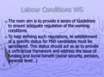 labour conditions wg