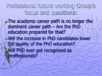 professional future working group s focus and questions