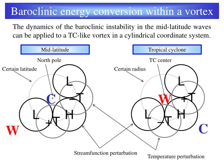 Baroclinic energy conversion within a vortex