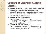 structure of classroom guidance lessons
