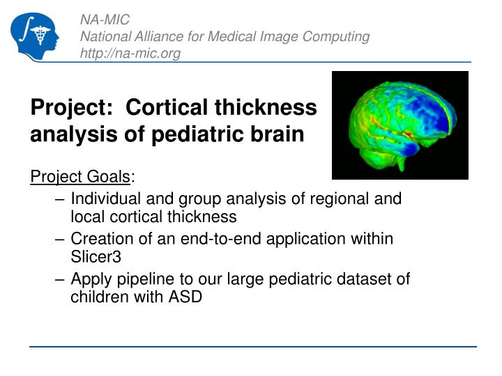 Project cortical thickness analysis of pediatric brain