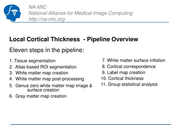 Local Cortical Thickness  - Pipeline Overview
