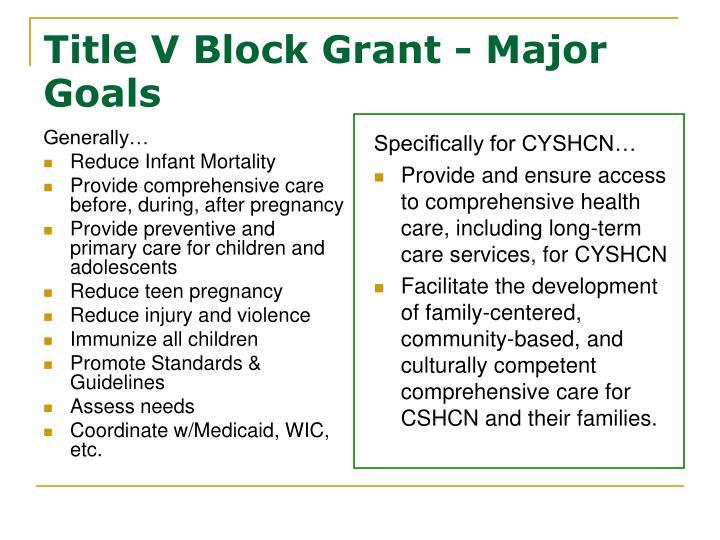 Title v block grant major goals
