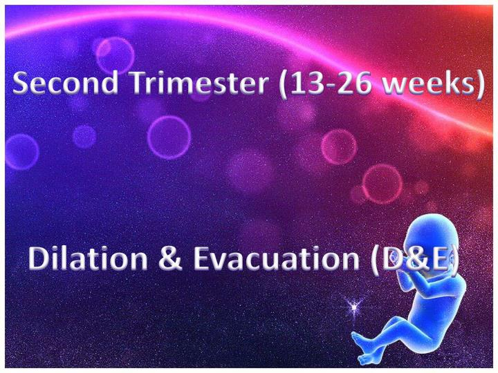 Second Trimester (13-26 weeks)
