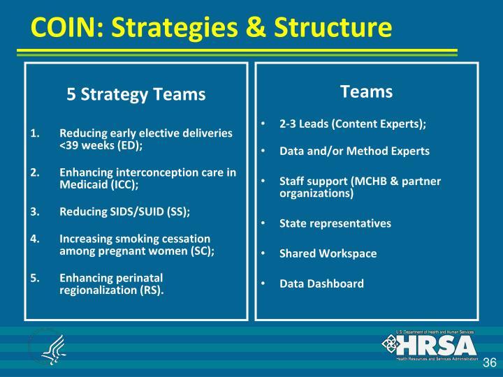 5 Strategy Teams