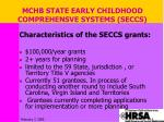 mchb state early childhood comprehensve systems seccs