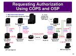 requesting authorization using cops and osp