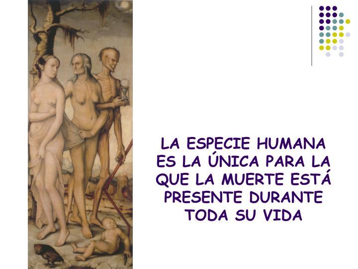 LA ESPECIE HUMANA ES LA ÚNICA PARA LA QUE LA MUERTE ESTÁ PRESENTE DURANTE TODA SU VIDA