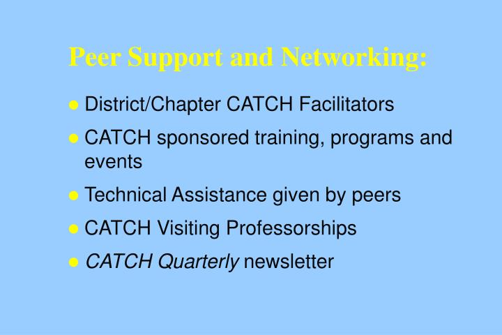 Peer Support and Networking: