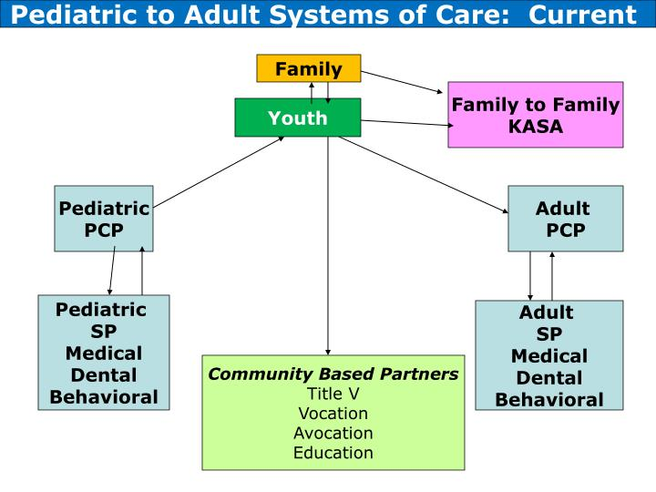 Pediatric to Adult Systems of Care:  Current